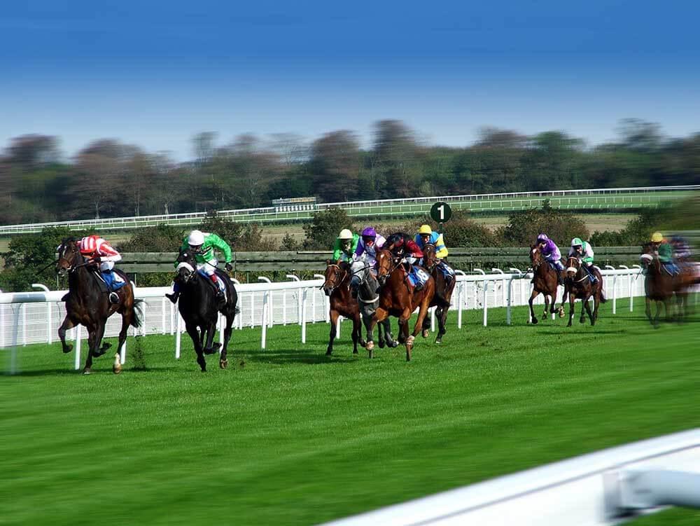 Mysore Race Odds November 11, 2020 Preview